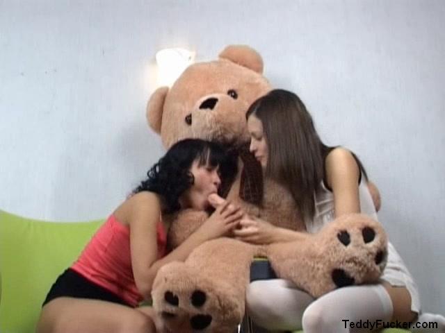 Порно с медвежонком