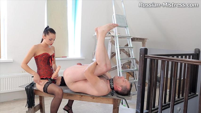 На коленях бьют по заднецы секс